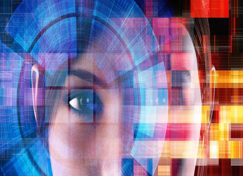 Biometric Identification and Privacy Law - Risk Group